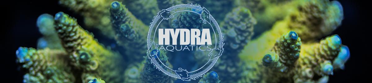 Hydra Aquatics Corals