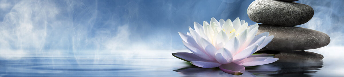 Meditative Wisdom