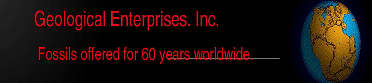 Geological Enterprises Inc