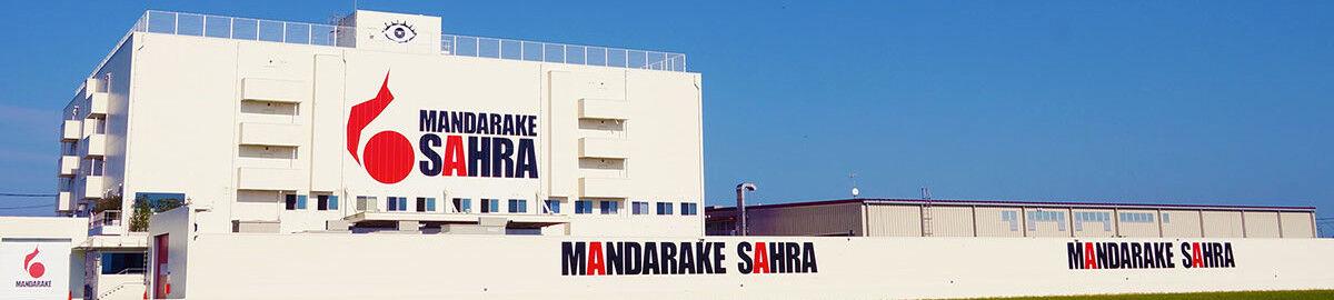 MANDARAKE - The Rulers of Time