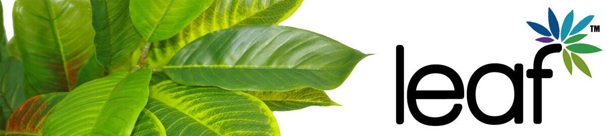 leaf_plants
