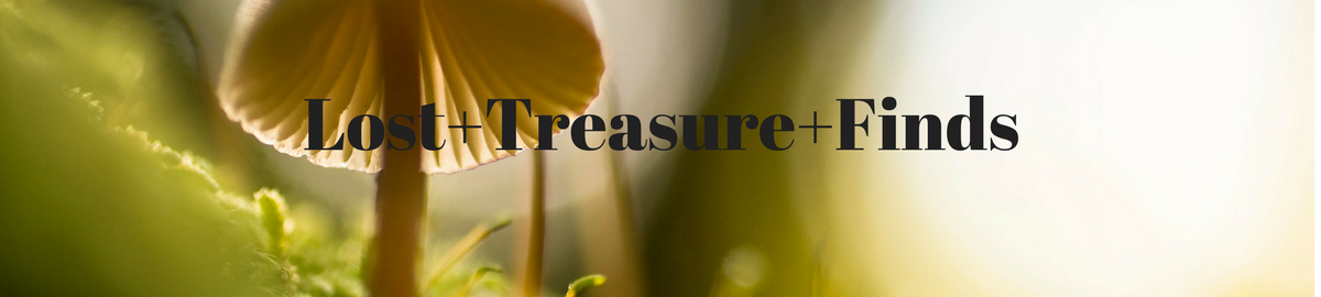 lost+treasure+finds