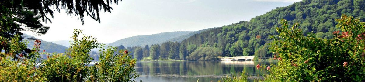 Allegany State Park Online