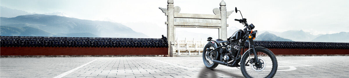 YDmotor2014