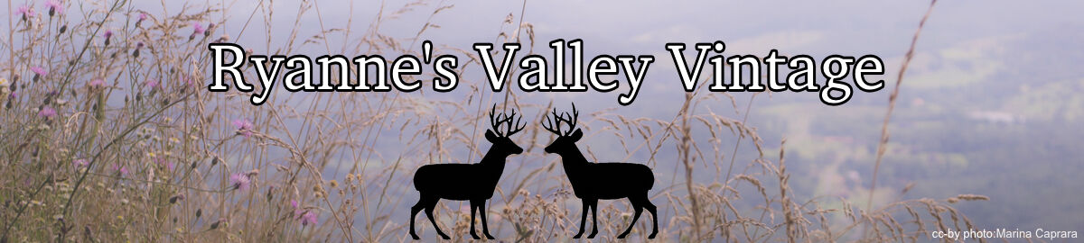 Ryanne s Valley Vintage