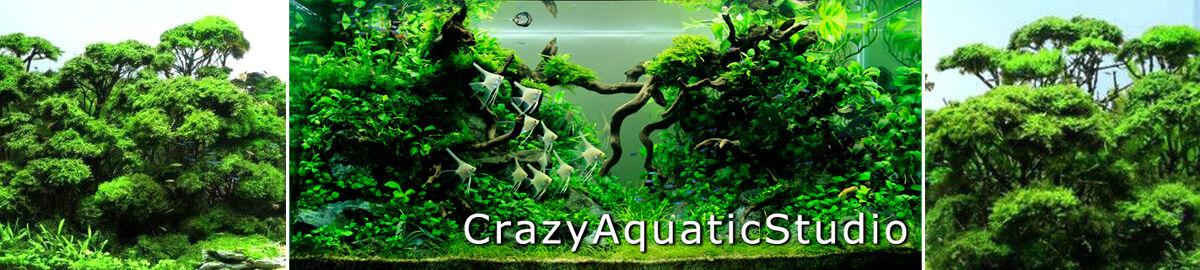 crazyaquaticstudio