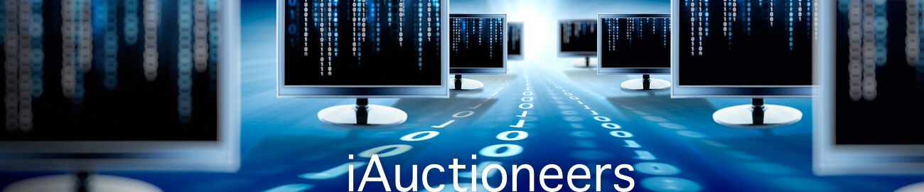iAuctioneers