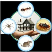 LOW PRICED PEST EXTERMINATION & PEST CONTROL SERVICES