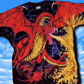 Great Wyrm Dragon t-shirt, dragon catcher T, The Swarm tee, Duel Oakville / Halton Region Toronto (GTA) image 7
