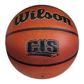 "Wilson Evolution CIS Basketball 29.5"" Sz7"