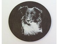 Wanted !!! Welsh Slate Border Collie Plaque