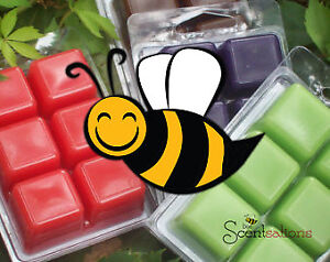 Bee Scentsations - Natural Bee's Wax Melts