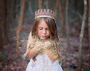 Crown babysitting company-******3769