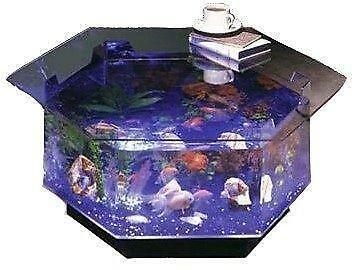 Fish tanks for sale 10 gallon 10 gallon fish tank ebay for Fish tanks for sale ebay