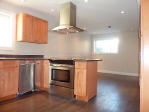 550ft2 - 1-bdrm suite for rent April 1st (Hastings and Nanaimo)