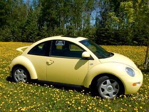 2000 Volkswagen Beetle Leather interior, Spoiler
