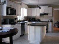 """The Last Finish"" kitchen renovations and furniture refinishing"