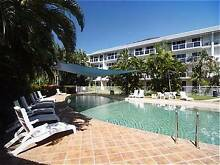 Room to Share in Palm Cove Manunda Cairns City Preview
