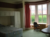 1 bedroom flat available 15th September - near to Leeds University