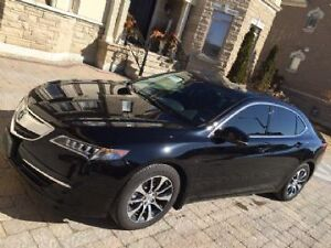 2015 Acura TLX Sedan TECH Package - FULLY LOADED