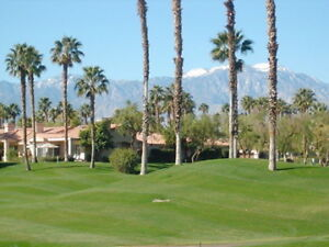 GET AWAY FROM THE COLD TO  A PALM DESERT CONDO !!