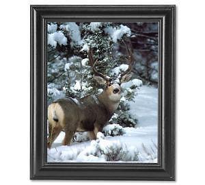 black picture frames ebay