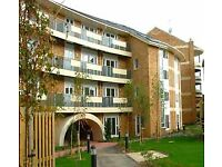TO LET - 2 Bed Flatshare in West Reading - DSS Welcome (works as perfect 1 bed rate)
