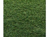 Artificial grass (snowdonia) 2m x 1m