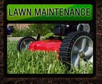 Lawn Care Available