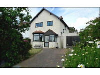 Three Bed Property Available to Rent - Warren Drive, Deganwy
