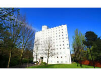 Wanstead - Beautiful newly decorated 2 bedroom, 2 bathroom with parking in quiet gated development