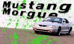 Mustang Morgue