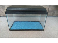 Tropical / gold fish 🐠 glass tank or aviarium