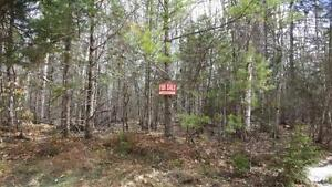 Wooded Lot 5.3acres