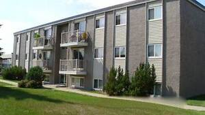 *INCENTIVES* 2 Bdrm~Convenient West End Family Bldg~160