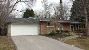 Beautifully Renovated Bungalow in Aurora