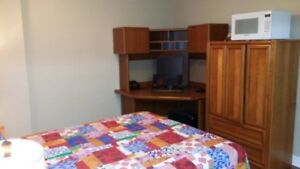 Newly renovated furnished basement unit available from June 1st