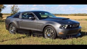 Mustang GT 5.0 with Shelby Sterling Grey Metallic color