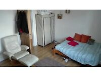 Big Double Room and Extra Living Room Great for couples