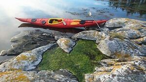Eastern Outdoors NDK(Nigel Dennis Kayaks)  Save $$$$