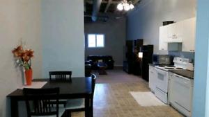 Large 2 bedroom loft. Fort Saskatchewan