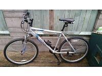 "19"" Apollo Verge mens bike excellent condition"