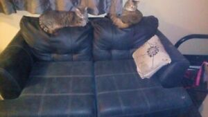 Love Seat, Leather, Good Condition! Couch is free (as is)