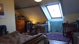 Large 3rd floor room with two flatmates, in a quiet part of Heaton