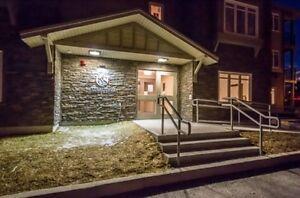 NEW PRICE!! Open House Sun 1 - 3; Kestrel Suites Paradise St. John's Newfoundland image 3