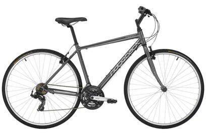 Immaculate - Ridgeback Motion - Hybrid Bike