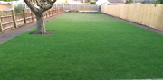 Sydney's Leading Turf/Grass & Irrigation Experts Marrickville Marrickville Area Preview