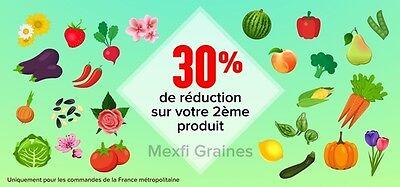Mexfi Graines
