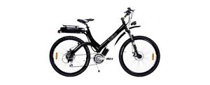 iGo Electric Bike