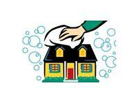 Domestic cleaner for your home
